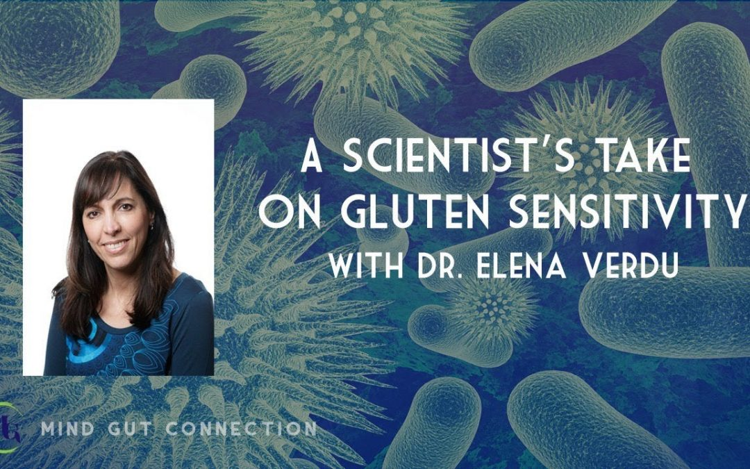 Dr. Verdu on The Mind Gut Conversation